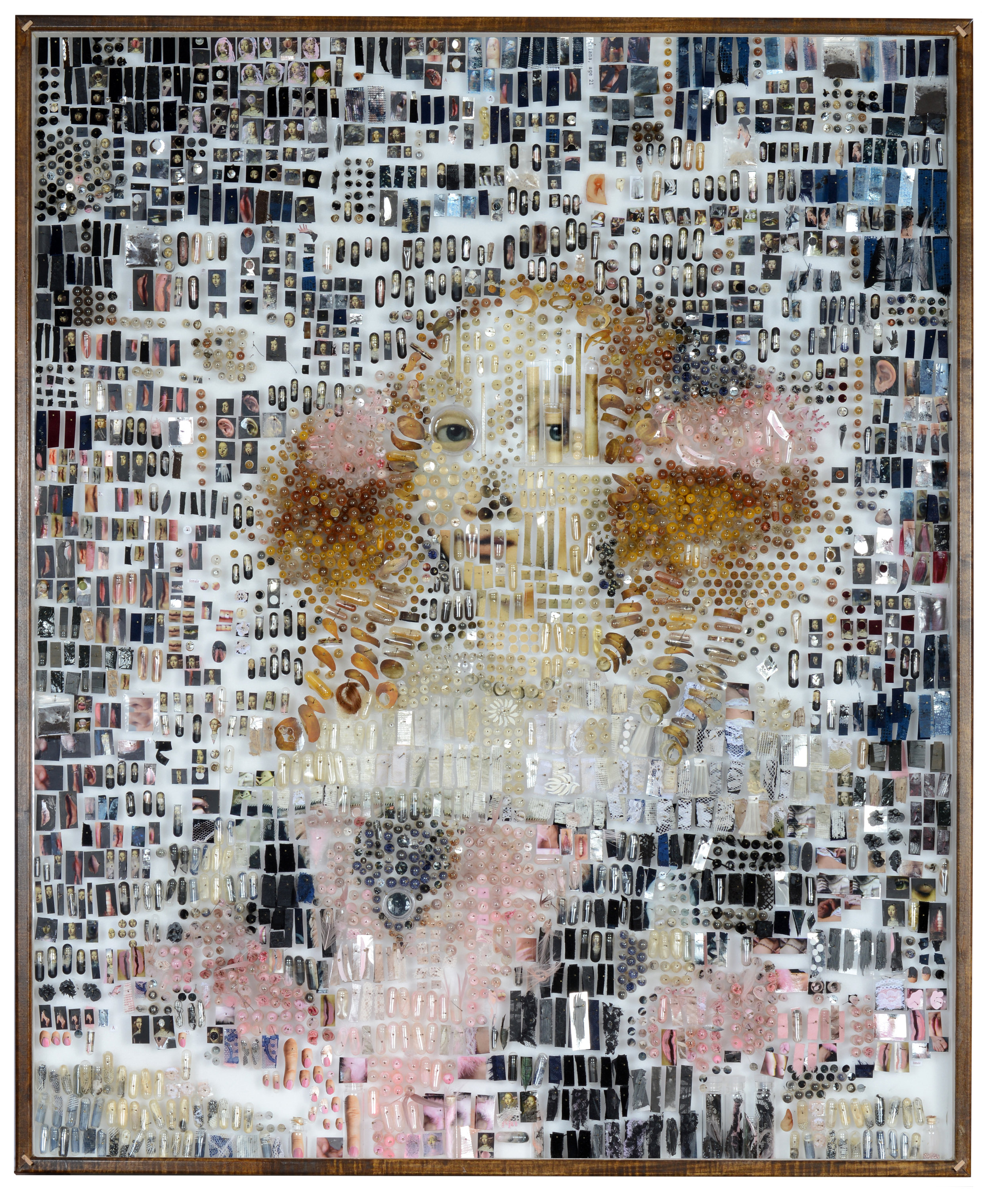 """Adriana: Female   2014    34""""L x 28""""w x 3.5d""""  photographs, fabric samples, painted photographs, botanical specimens, hair, crystals, costume jewelry, spices, cast resin, clay, thread, insect pins, capsules, specimen bags, perfume vials"""