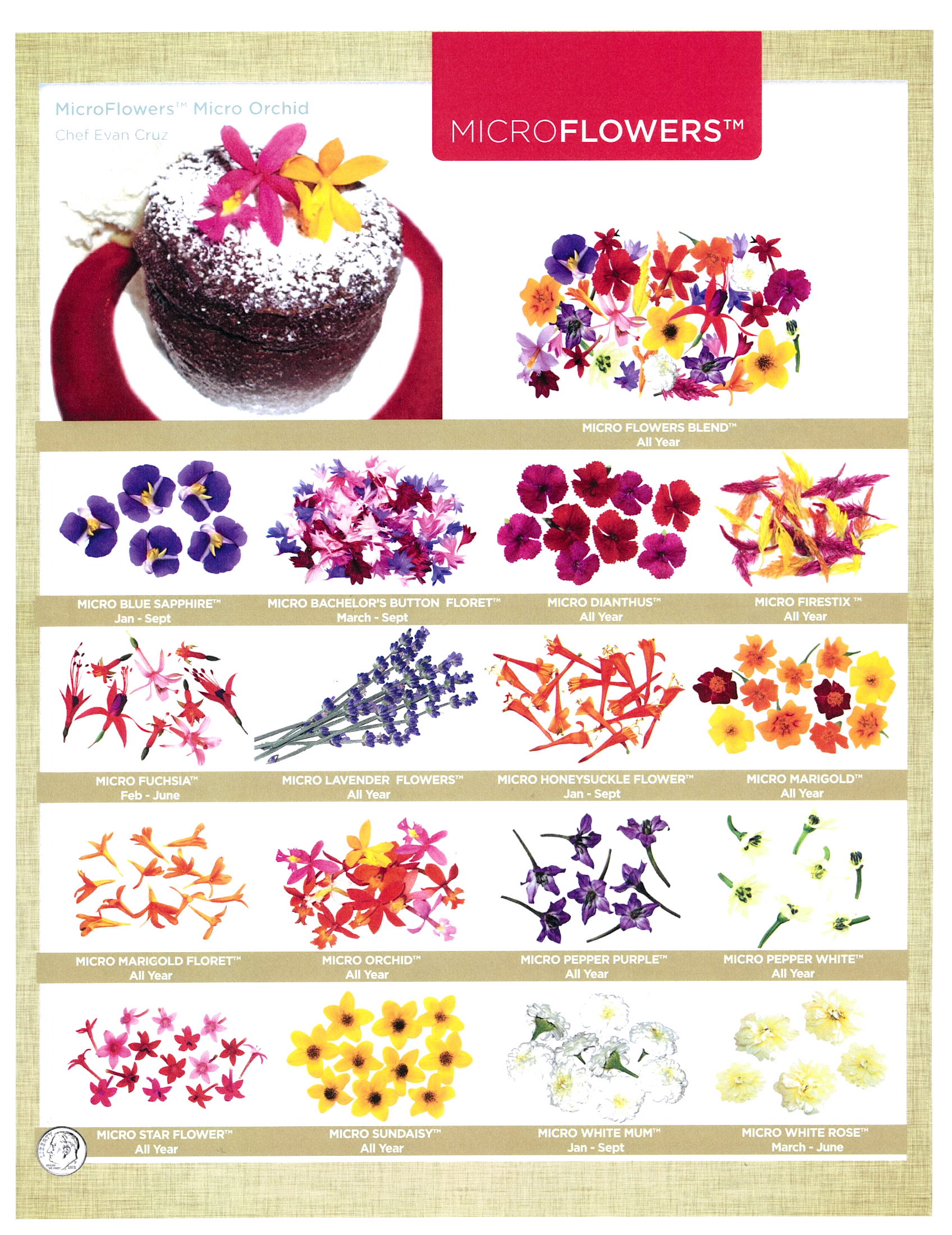 edible flowers page 4