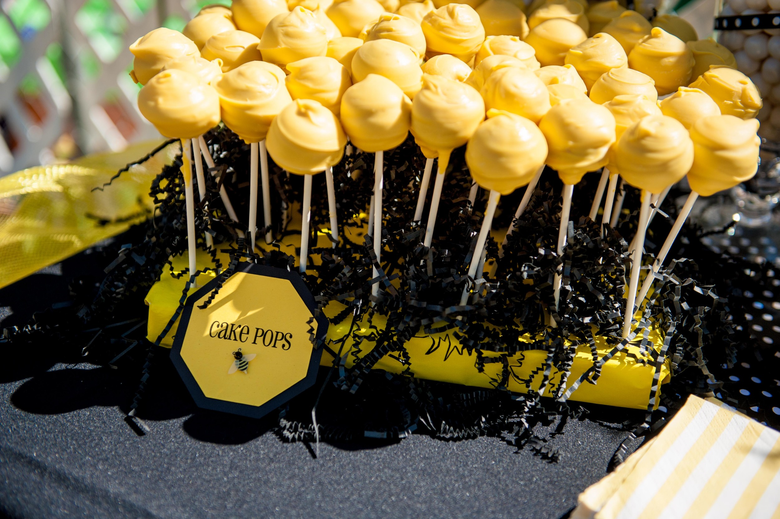 Fun to Bee One Cake Pops