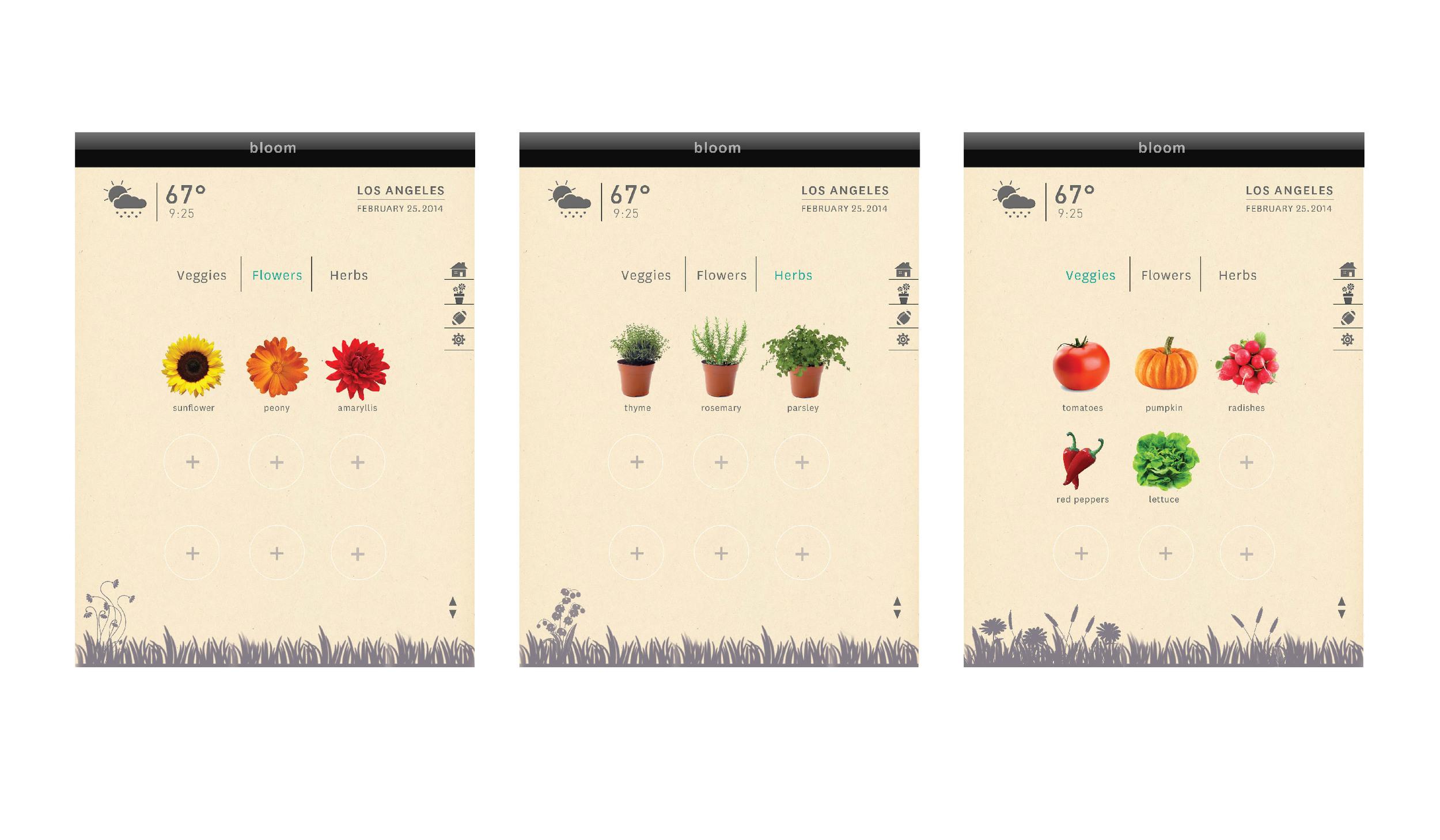 screen design-03.jpg