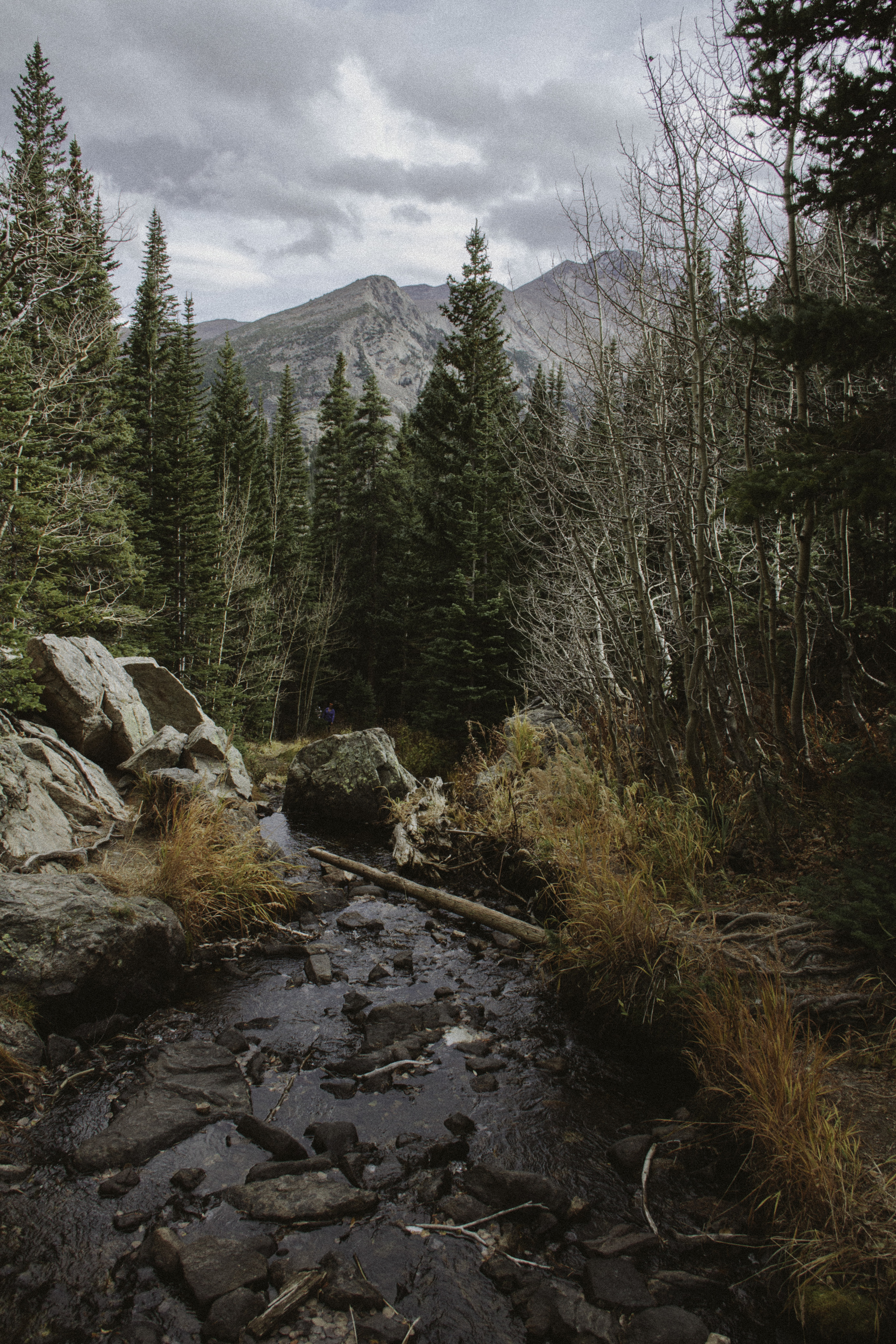 Rocky Mountain National Park, 2015