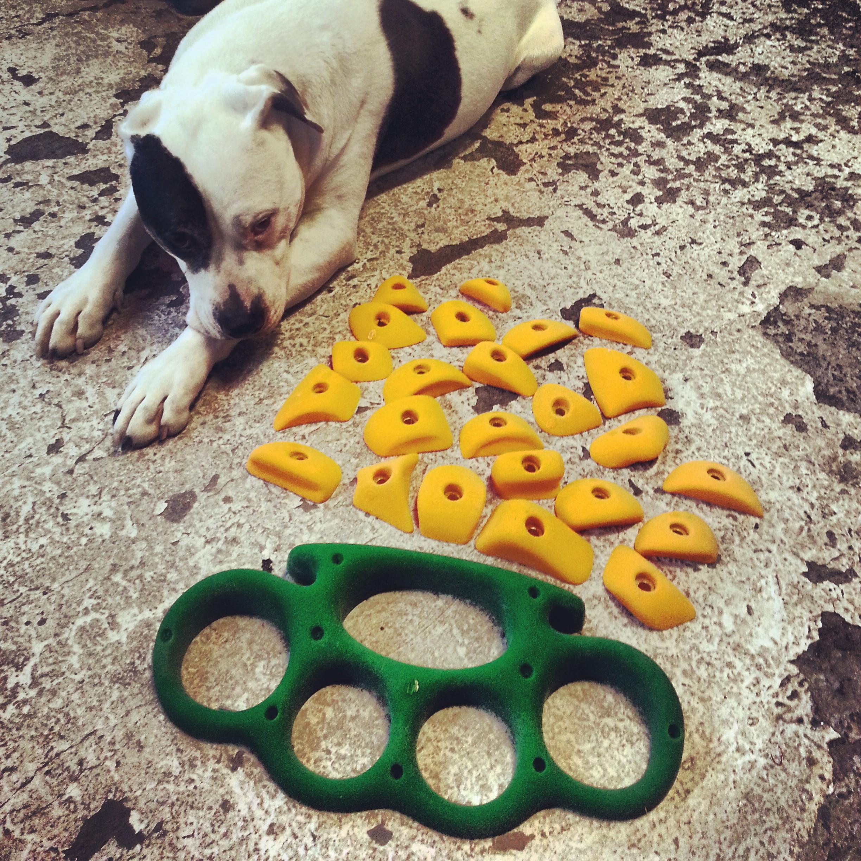 Ronin, the ORIGINAL Dojo dog