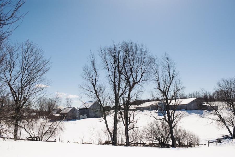 Cosman & Webb Farms