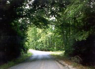 A country road in Forest Hill, Louisiana - The town Saitter is based on