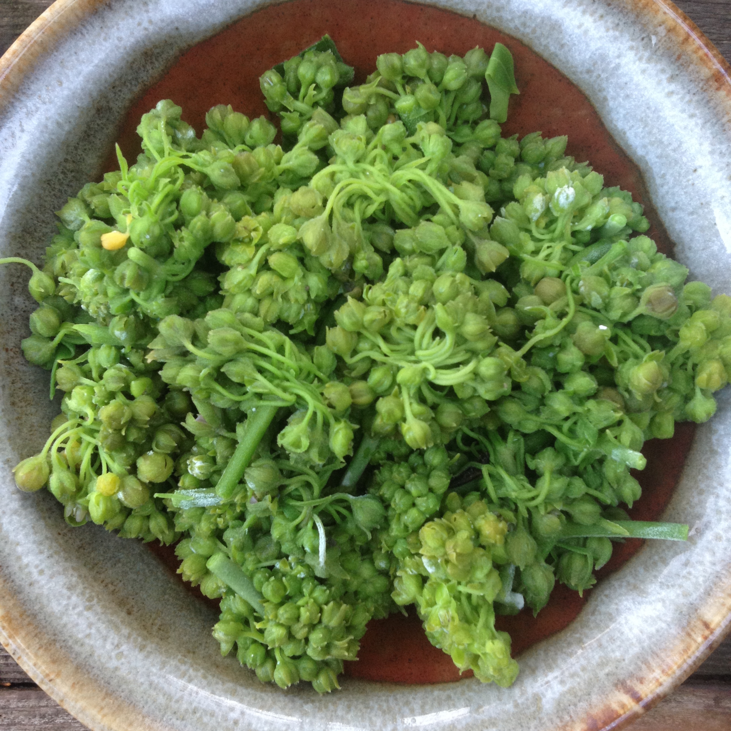 After blanching, the flowers take on a vibrant green color.