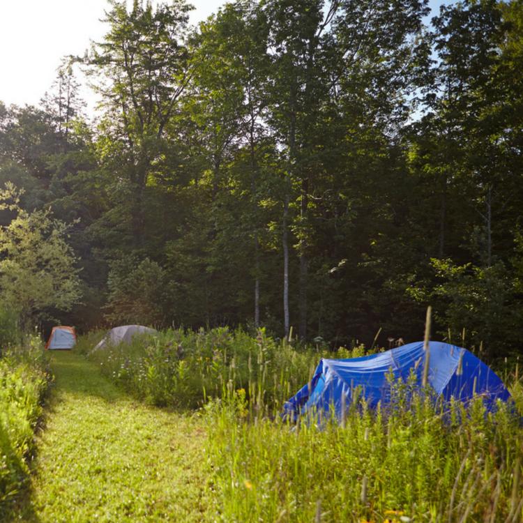 tents-sq-2.png
