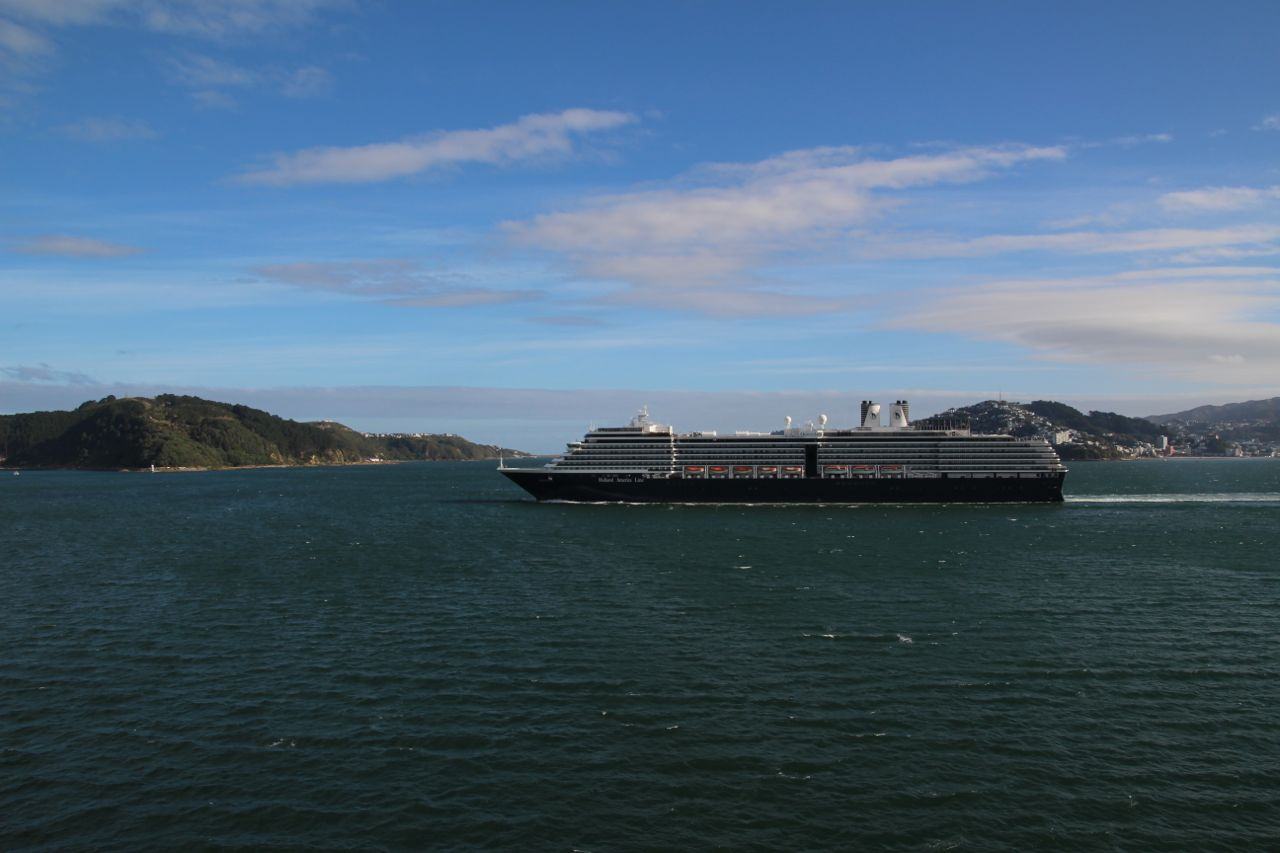 Fitzroy Bay and a cruise ship.