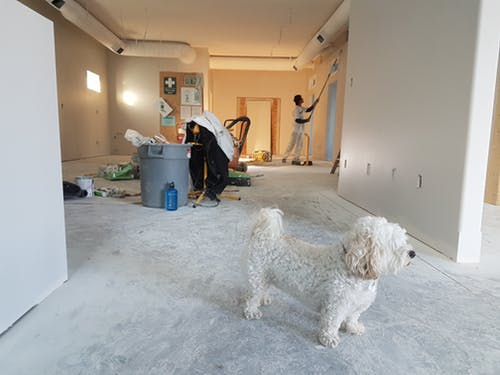 Don?t Be Surprised Things to  Expect With Your Remodel.jpeg