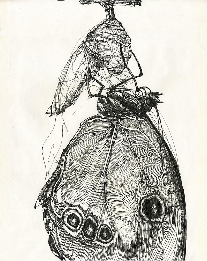 Melissa_Carmon_Myers_Art_Drawing_Metamorphosis.png