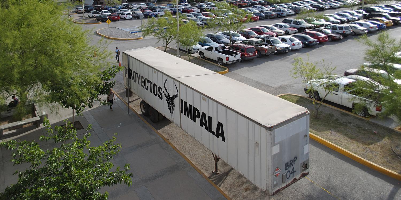 01 Impala en la UACJ_Alejandro Morales.jpg