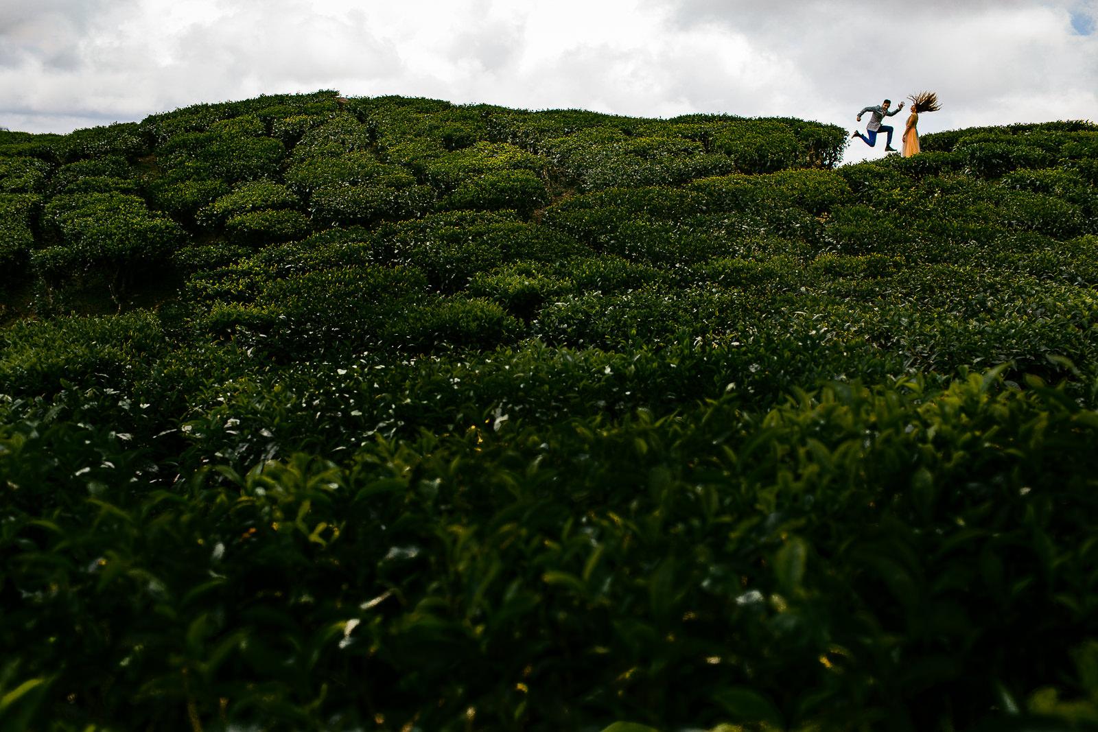 www.samandekta.com_6.JPG