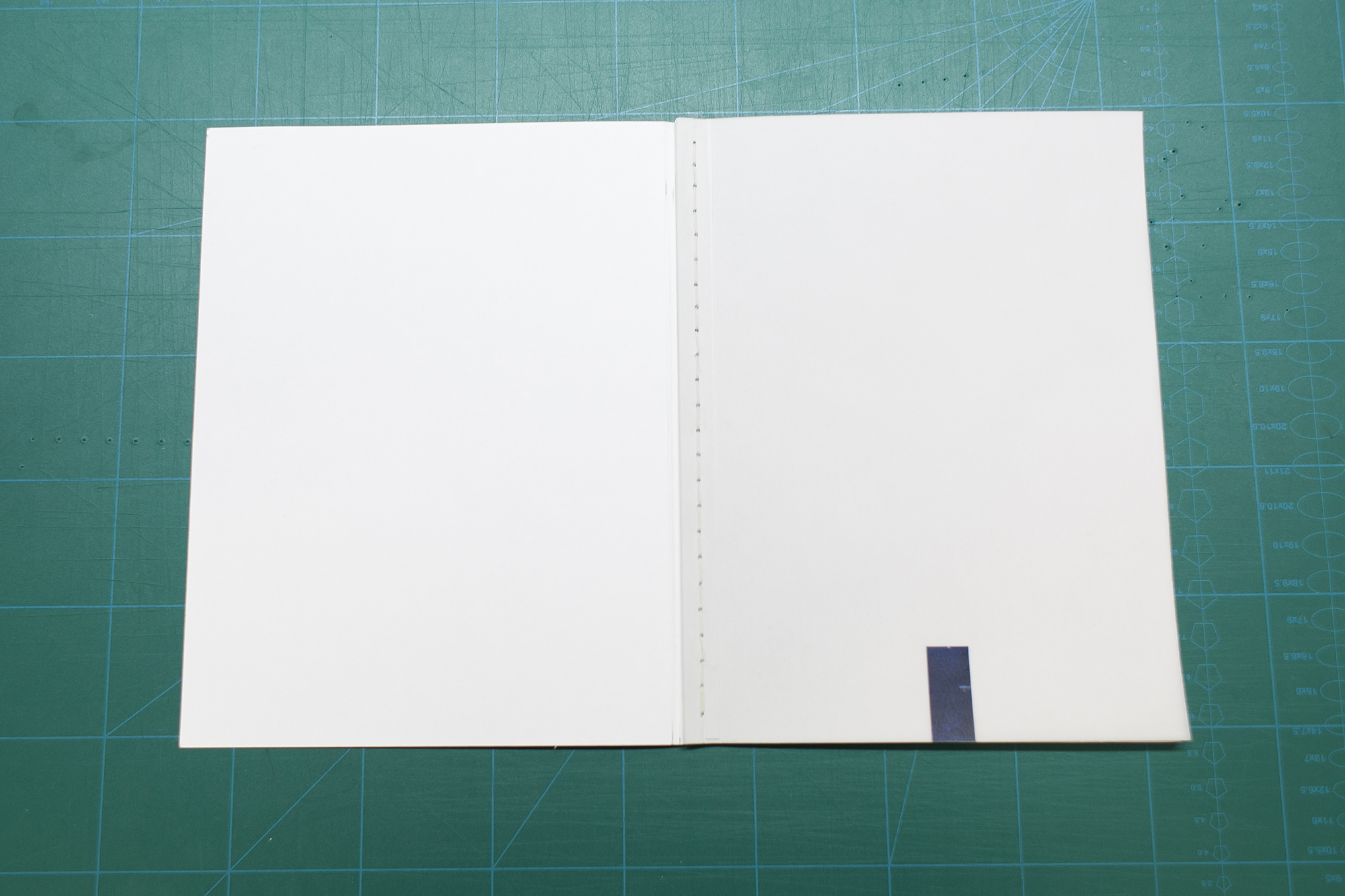 ncadbook1-2.JPG