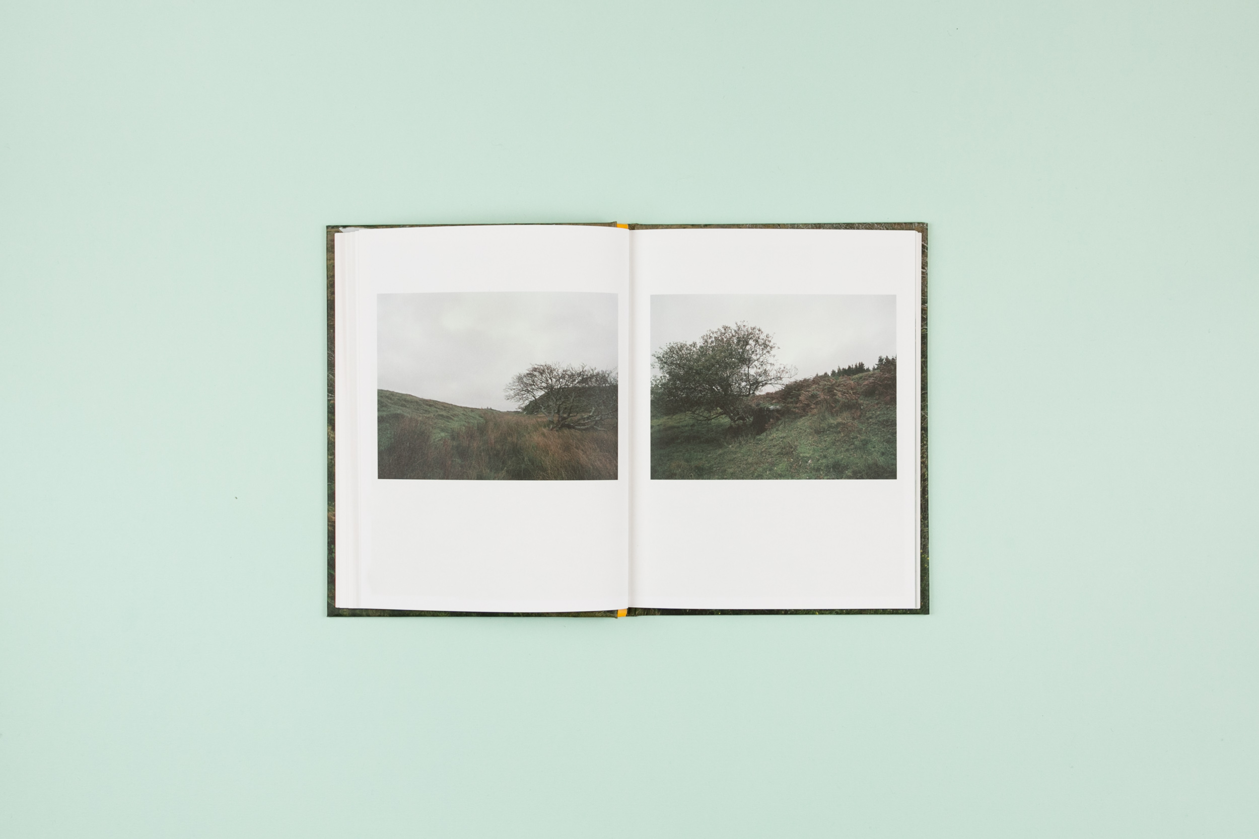 The Whistle Blowing Photobook Photography Lorraine Tuck Design Read That Image