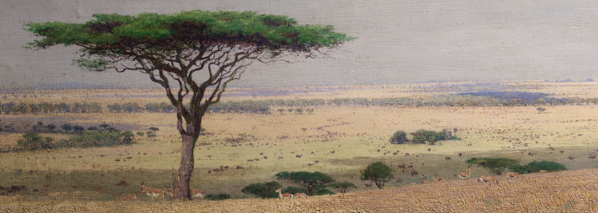 William Leigh's plein-air African preparatory painting, for the ANHM diorama.