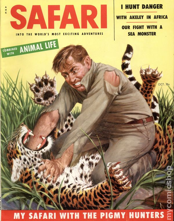 Cover to Safari, depicting Akeley's battle. Circa 1950's