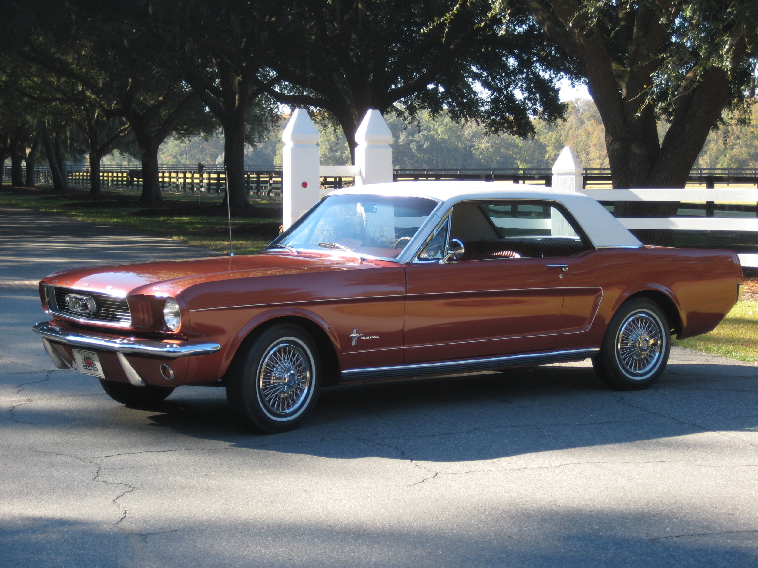 Bill Perry's 1966 Mustang Sprint 200