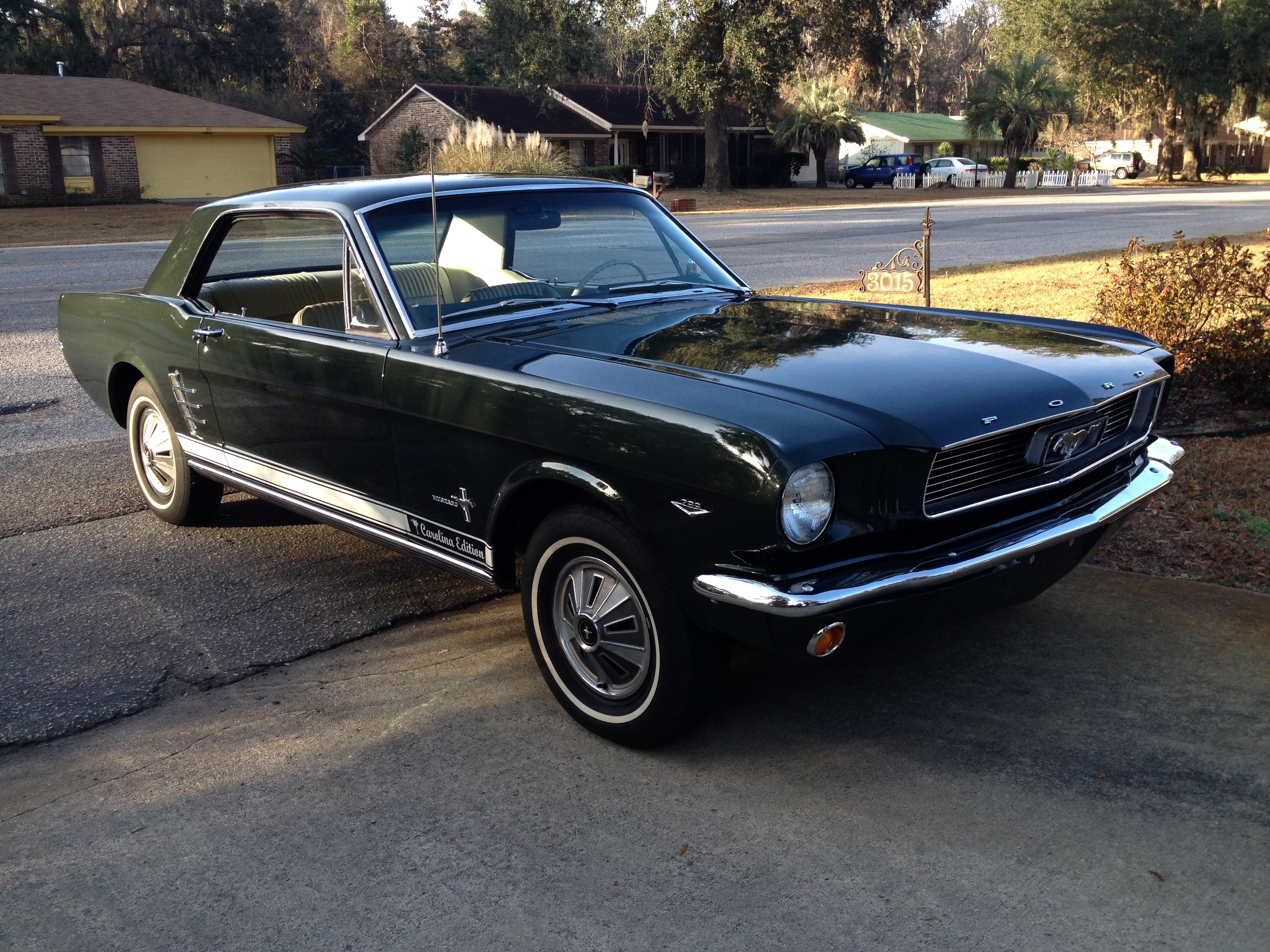 Bill Perry's 1966 Mustang, 289