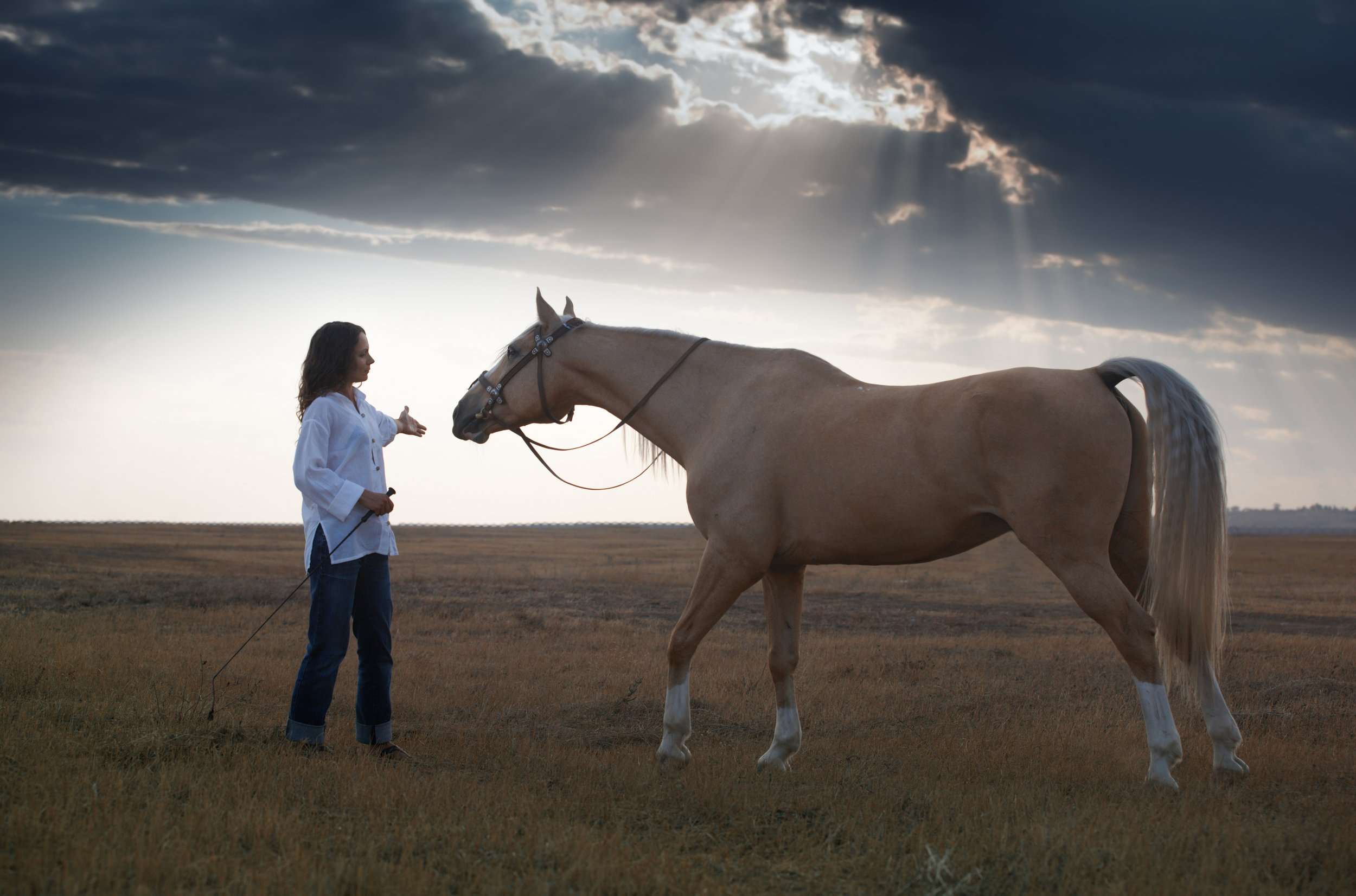 woman and palomino
