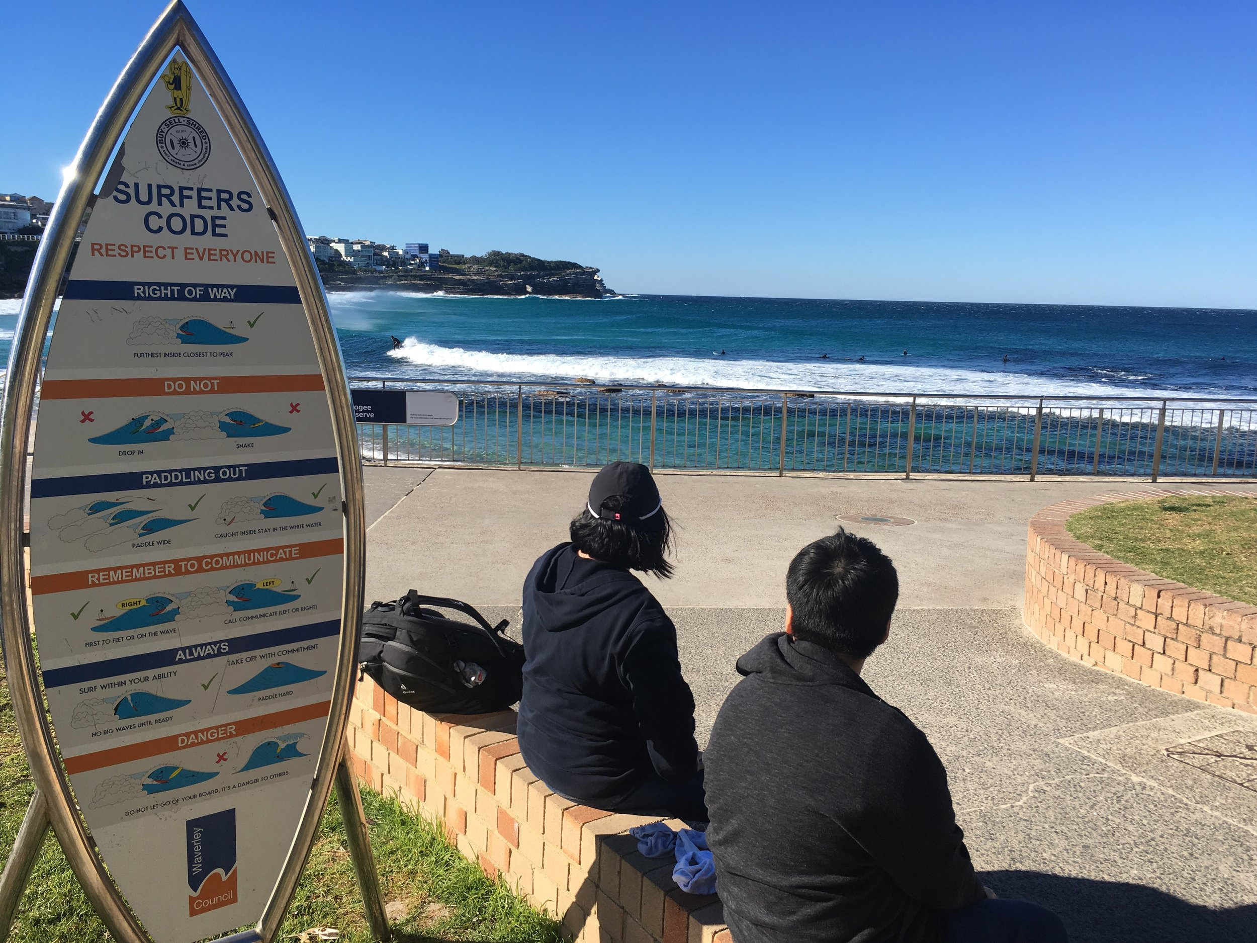 Some dank facts at Bronte Beach.