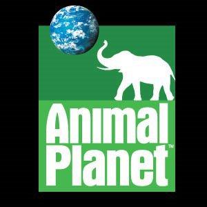 AnimalPlanetLogo1.jpg