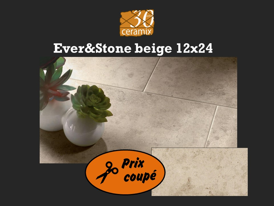 EverStone beige 12x24 - 1,69$/pc