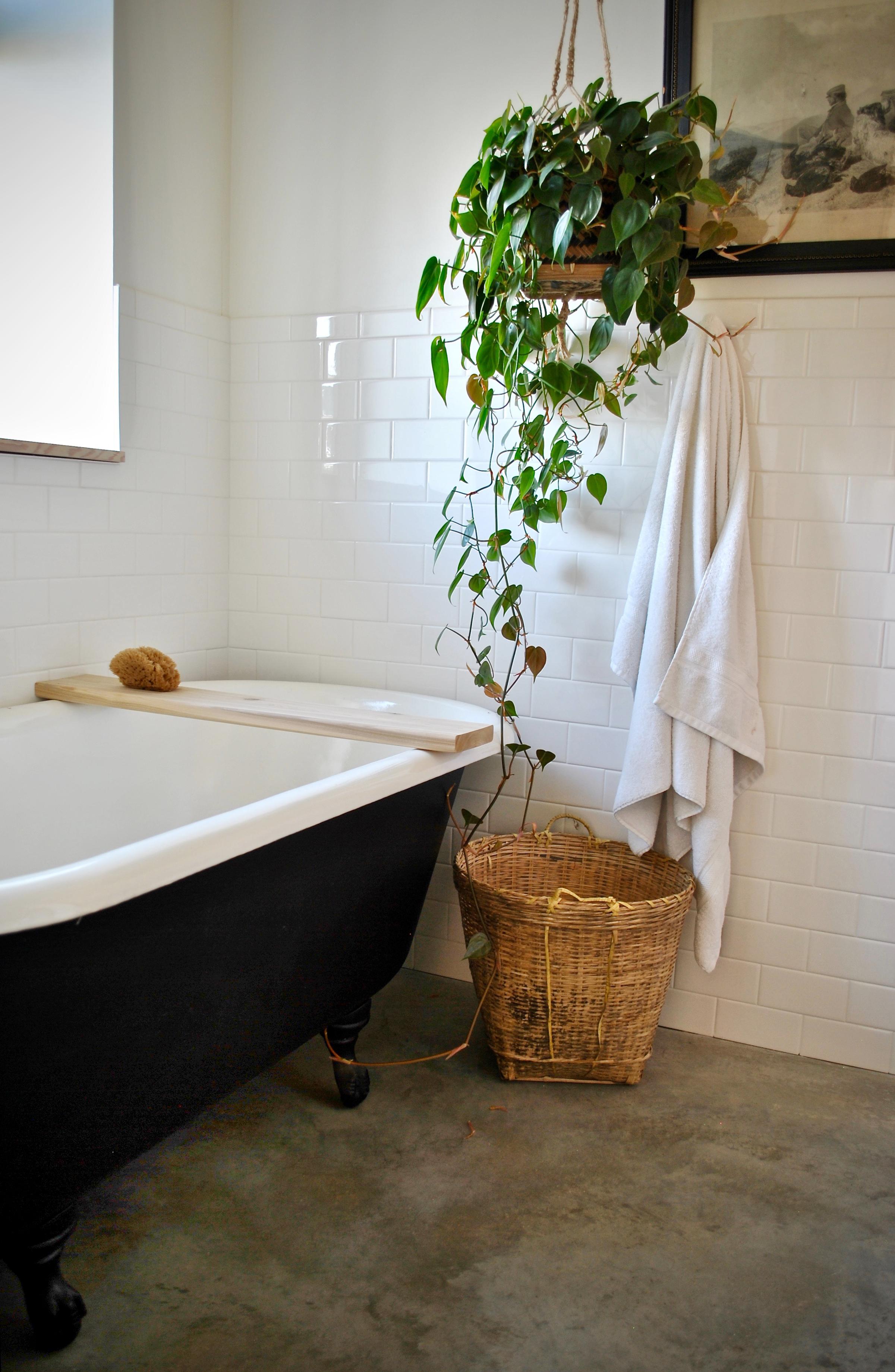 earle bath 3(b).jpg