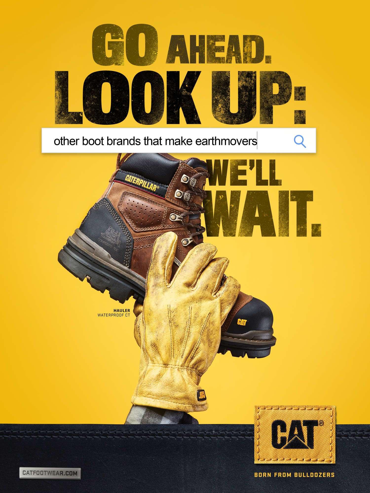 cat-go-ahead-look-up.jpg