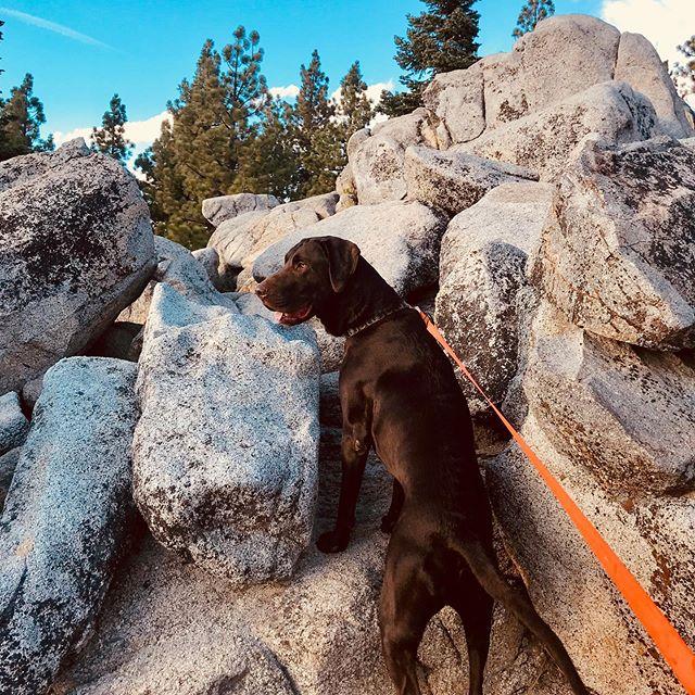 Boulder buddy