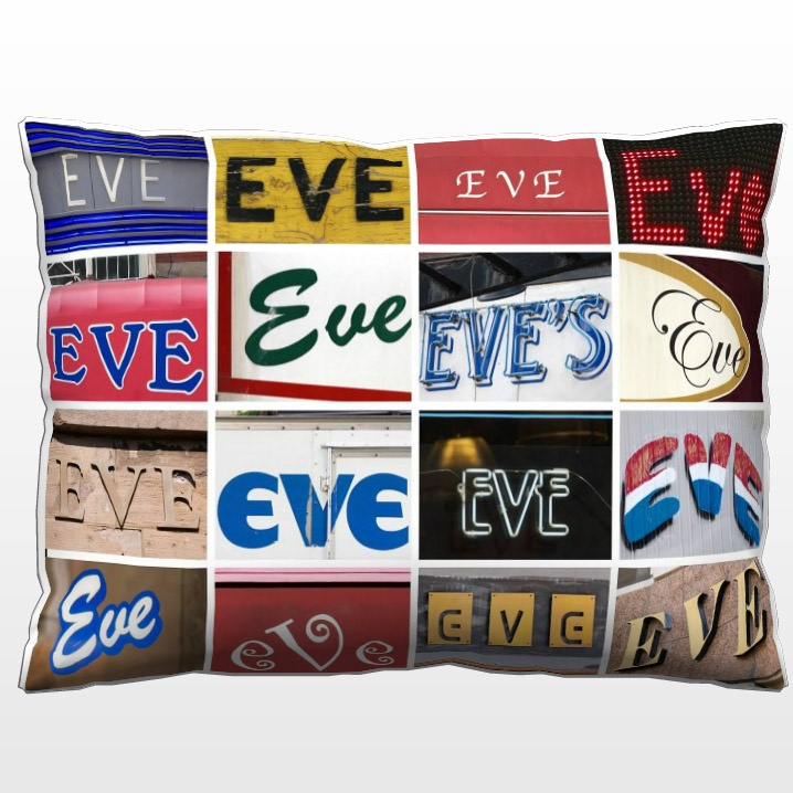 https://www.etsy.com/listing/201076841/personalized-decorative-pillow-featuring?ref=shop_home_active_13