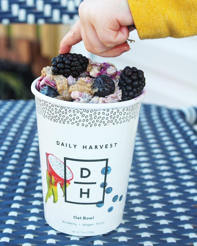 The cutest little fingers I ever did see 😉 Shamus enjoyed this overnight oat bowl topped with fruity and almond butter goodness by @dailyharvest. Cheers to Friday Eve 💜  #bitofdelish #nomnom #beautifulcuisines #foodblogeats #eatingfortheinsta #dailyharvest #breakfastfordinner #oatbowl #overnightoats #yahoofood #tastingtable #heresmyfood #buzzfeedtasty #cleaneating #eatrealfood #blogger #foodie #healthylifestyle #wellness #wellnessjourney #eeeeeats