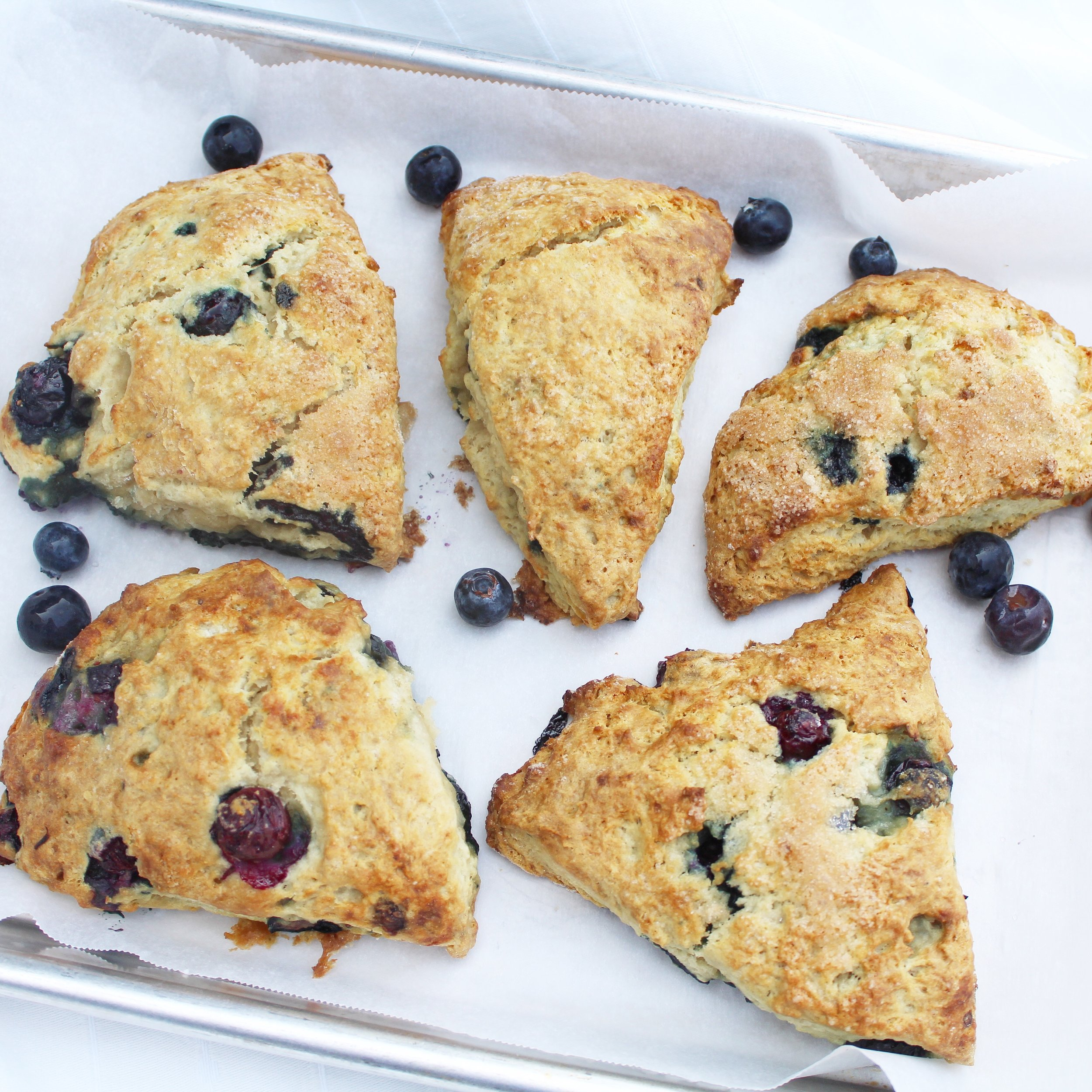 Blueberry Scones 3.JPG