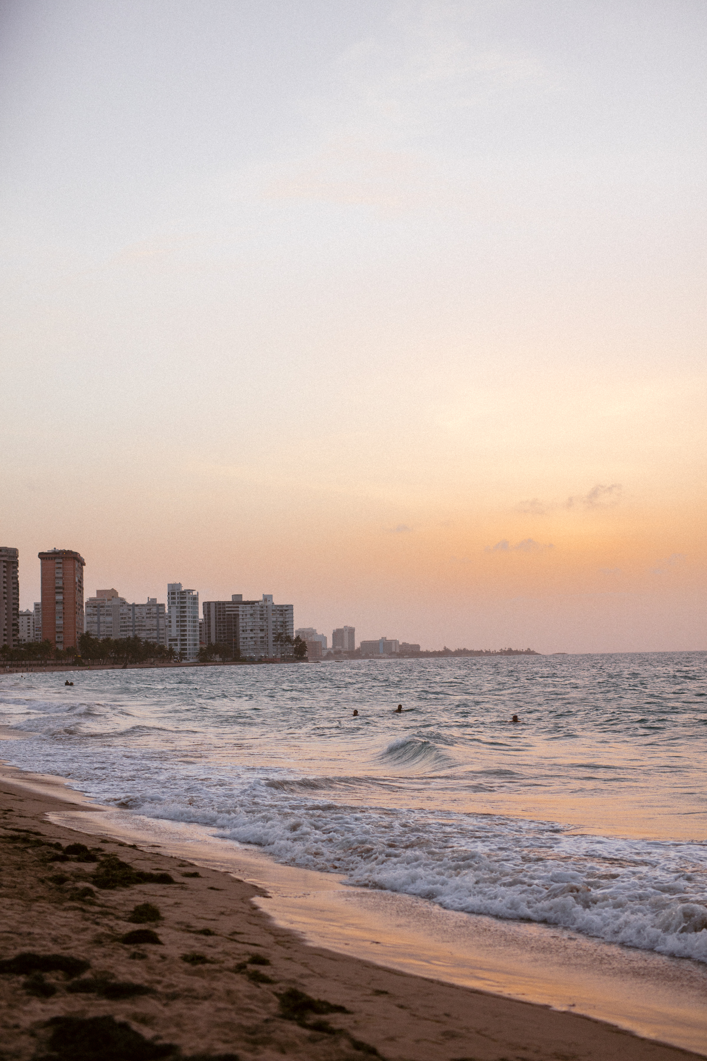 Ocean Park-3.jpg