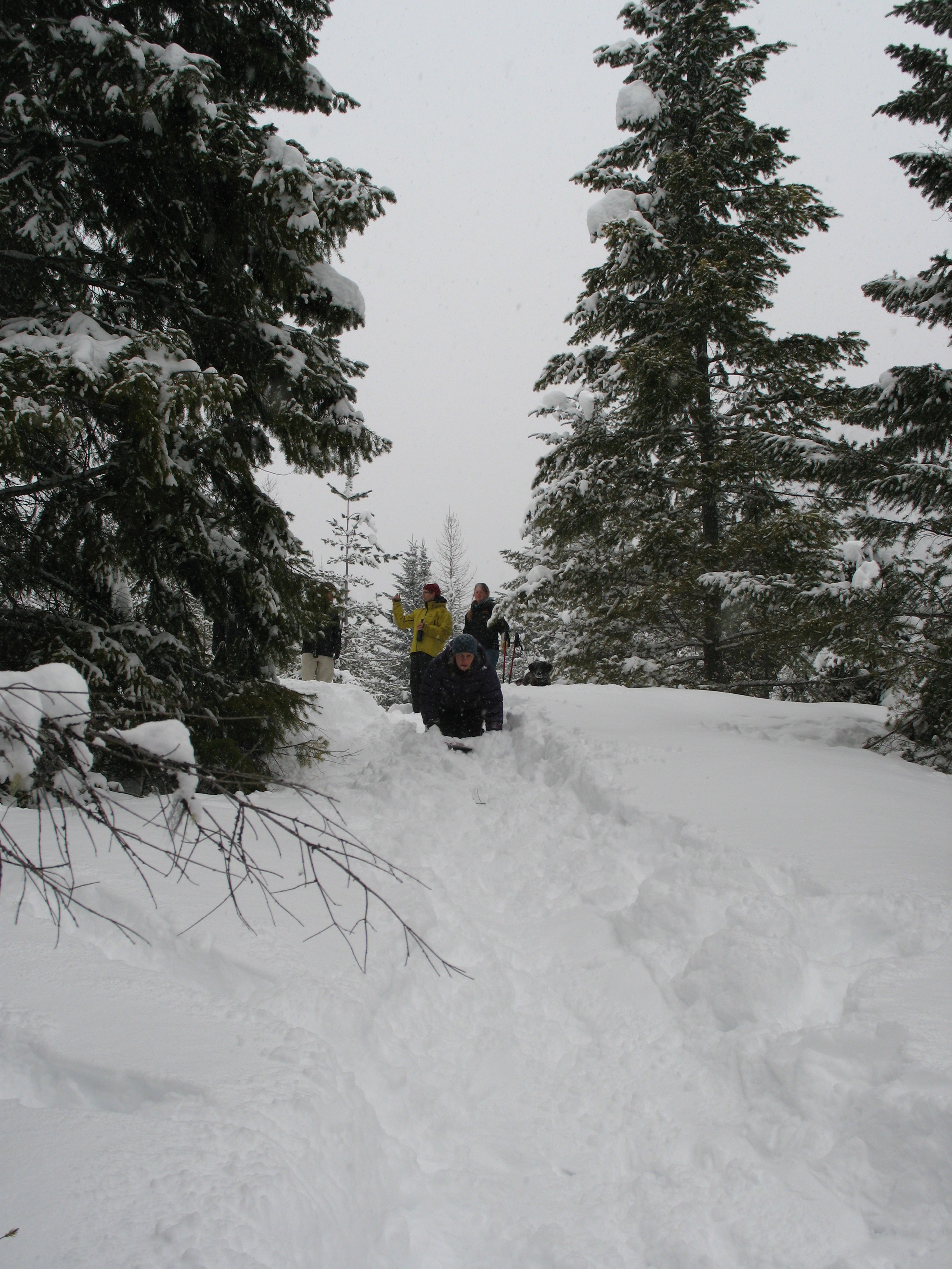 Kootenay Rockies Snow Day