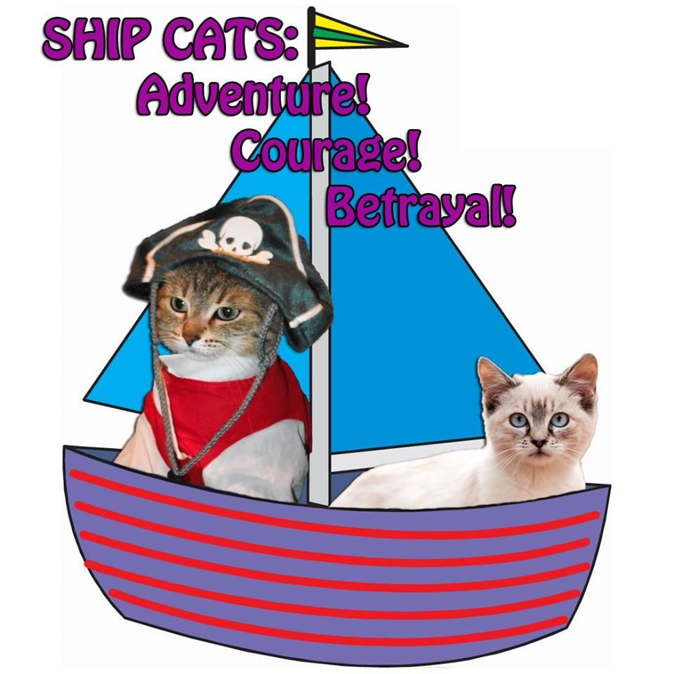 shipcats.jpg