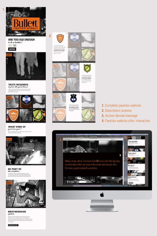 Copy:  1. Complete parallax website  2. Description screens  3. Access denied message  4. Parallax website after interaction
