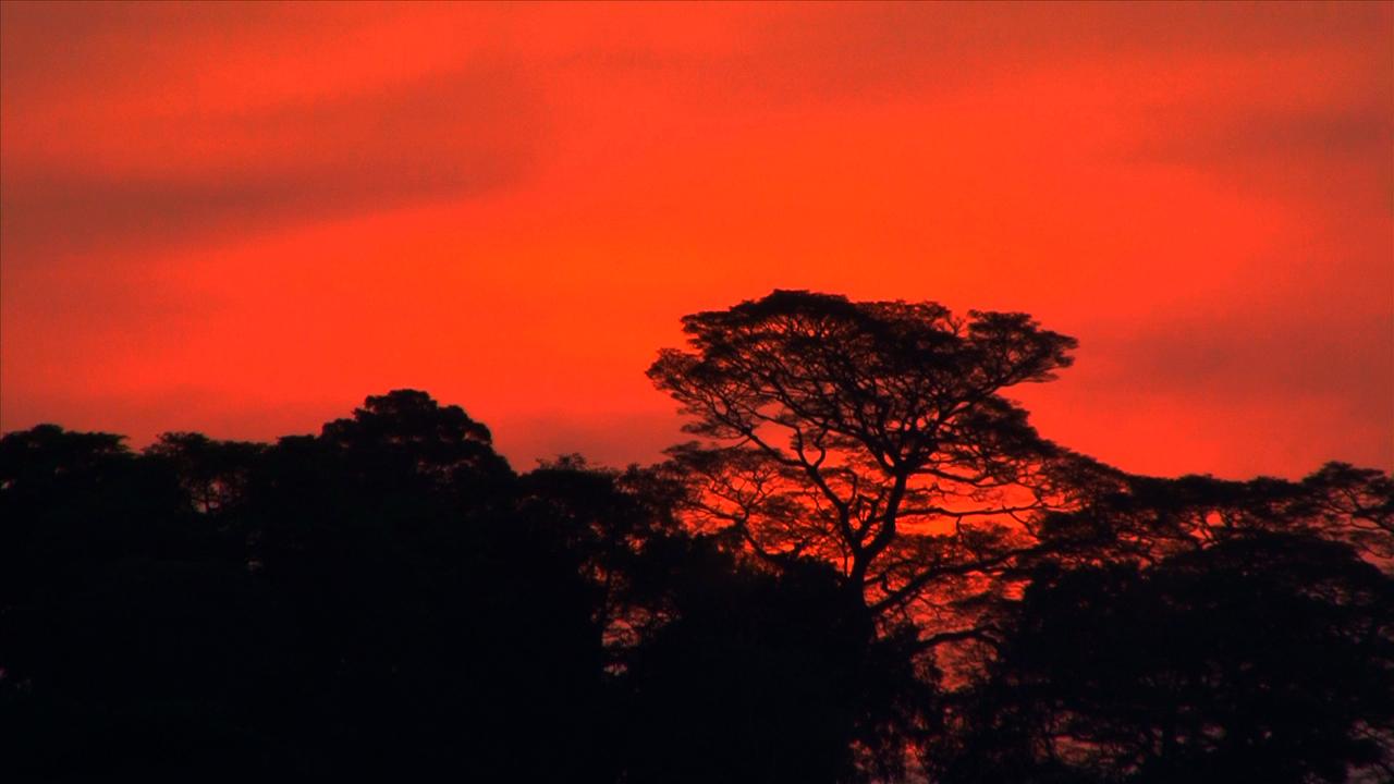 uganda sunset.jpg