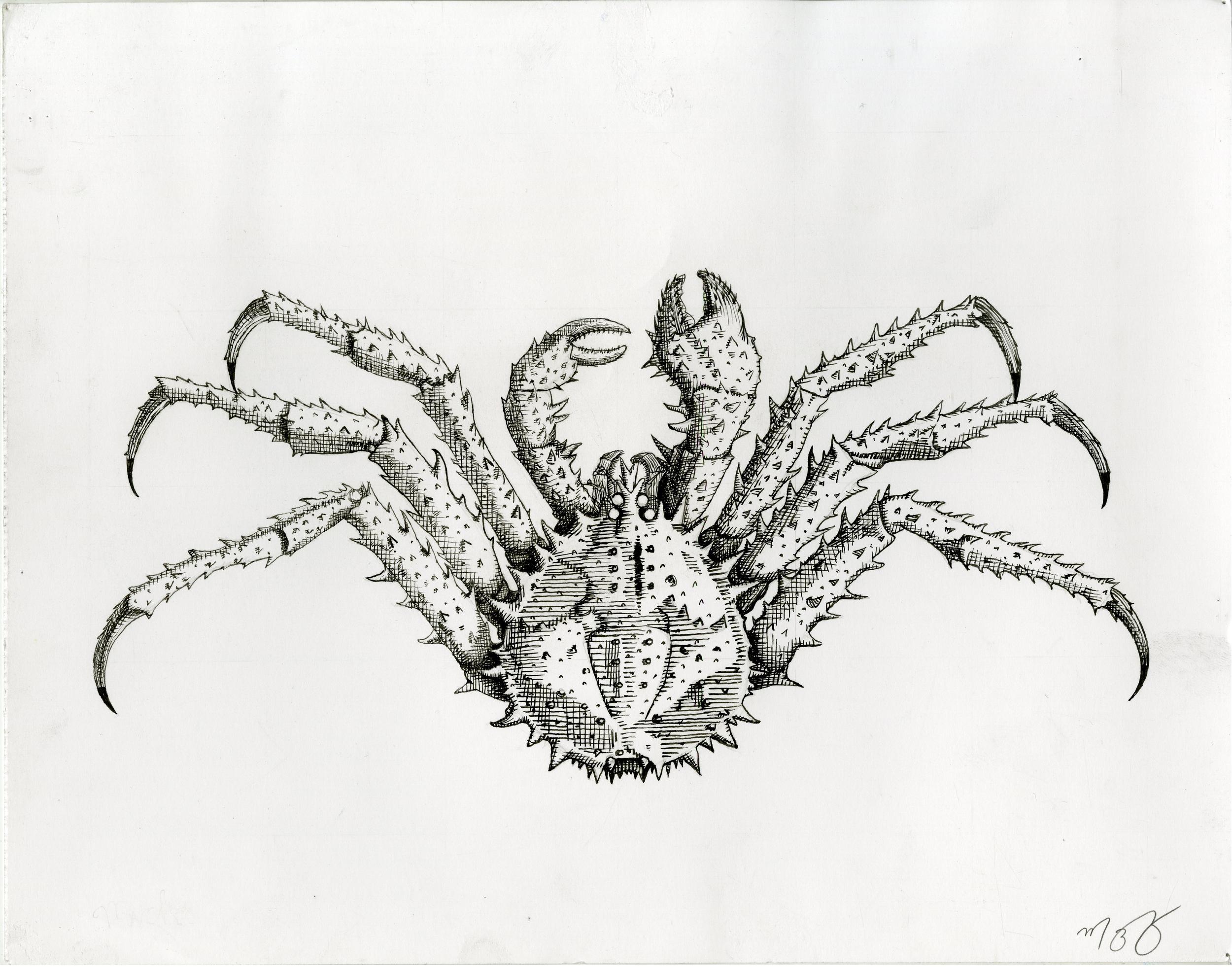 mzalesky-crab001.jpg