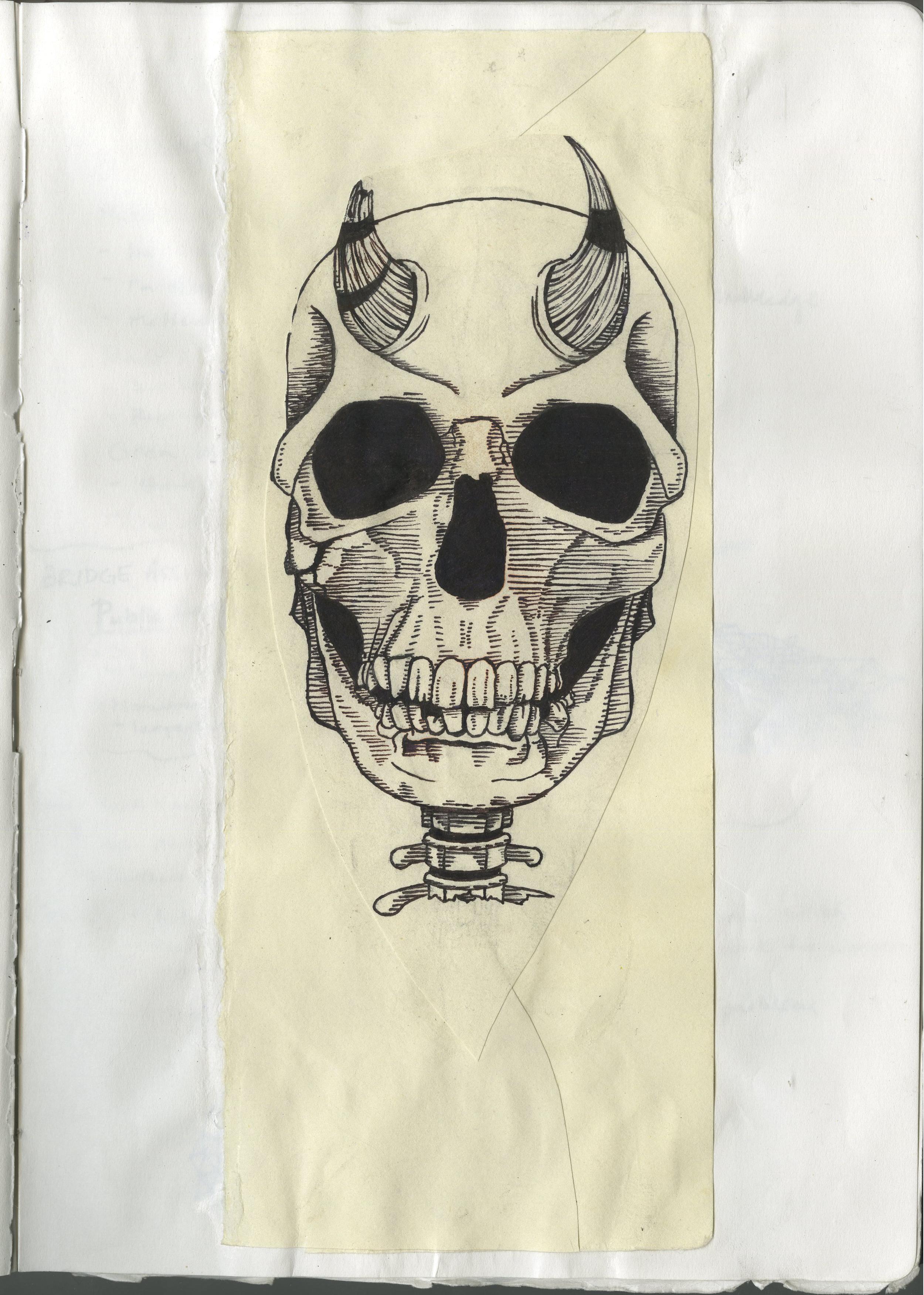 mzalesky-skull012.jpg