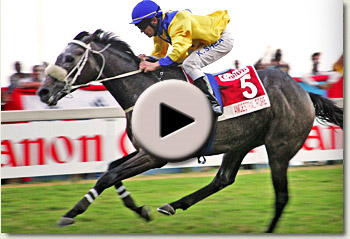 video of ancestral fore winning the 2010 canon gold cup grade 1