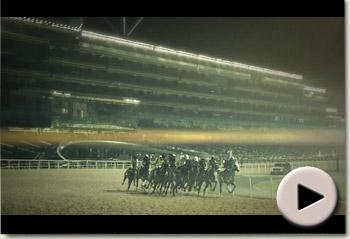 Imbongi - Dubai International Racing Carnival