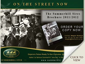 Summerhill Sires Brochure 2011/2012