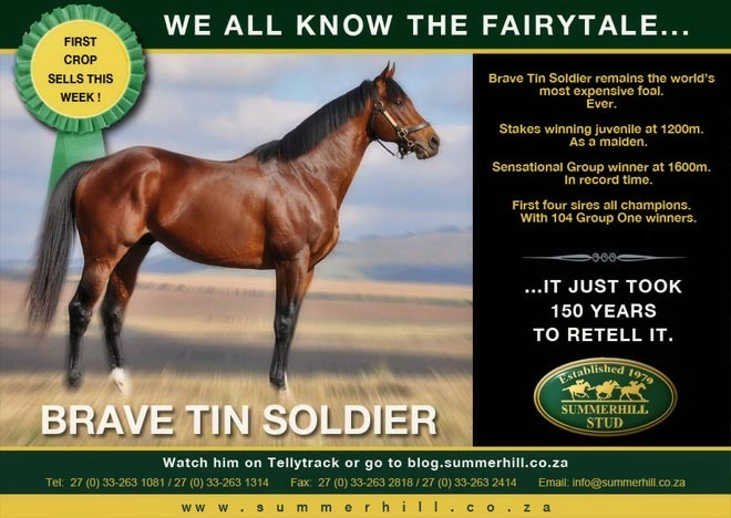 brave-tin-soldier-national-yearling-sale-13.jpg