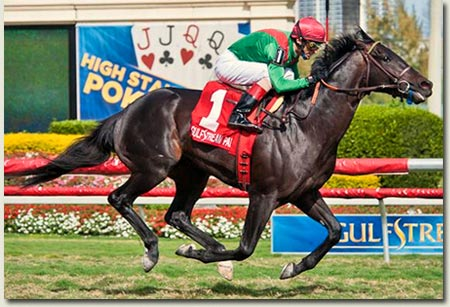 Howe Great wins Palm Beach Stakes