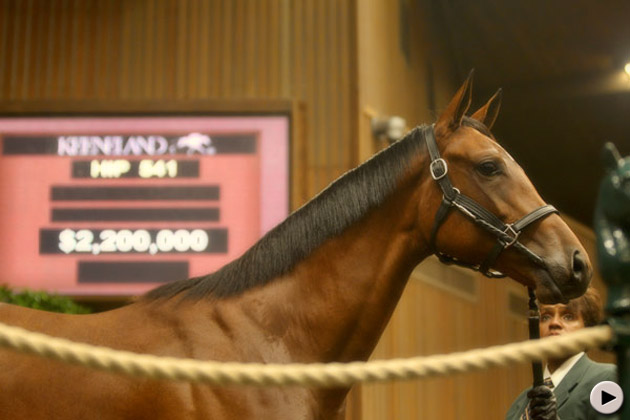 Keeneland September Yearling Sale Day 3