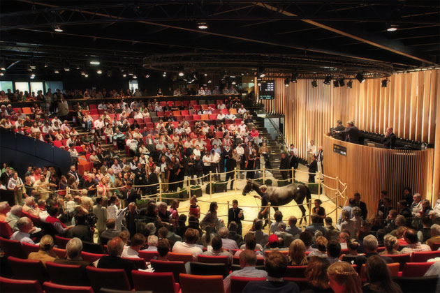 Arqana Sales Ring Deauville