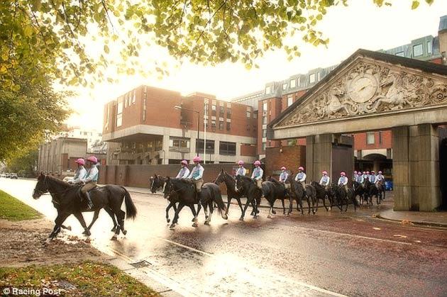 Queen's Cavalry dressed in Frankel's Colours
