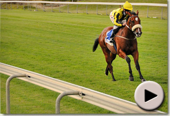 Cape Royal by Royal Academy wins on debut