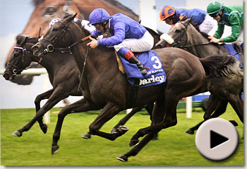 Blue Bunting wins the Darley Irish Oaks at The Curragh