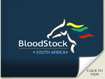 Emperors Palace National Yearling Sale Results
