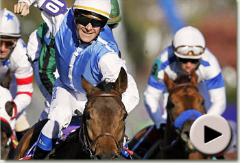goldikova winning her third breeders cup mile at churchill downs racecourse video